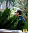 Jimmy Dimora walking towards bare pool at Mirage Hotel