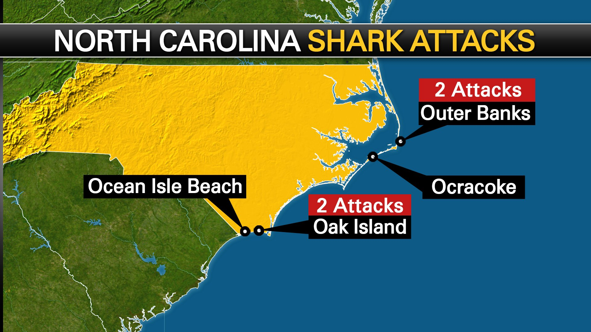What S Behind Increase In Shark Attacks Off The Carolinas Fox8 Com