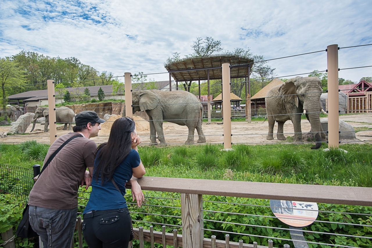 Fully vaccinated visitors no longer need to wear masks at Cleveland Metroparks Zoo