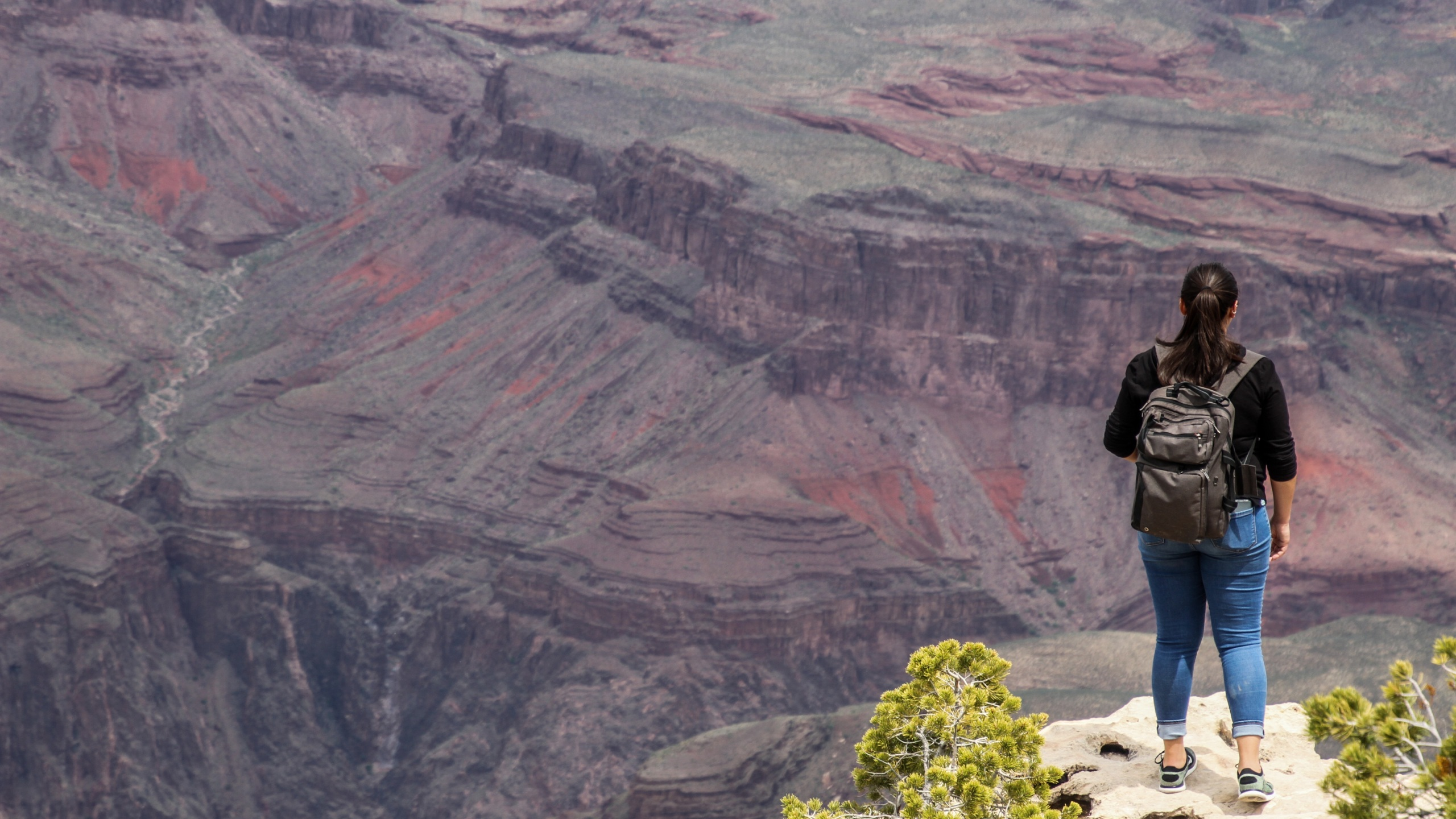 Hikers walk by the edge of the cliffs of the Grand Canyon