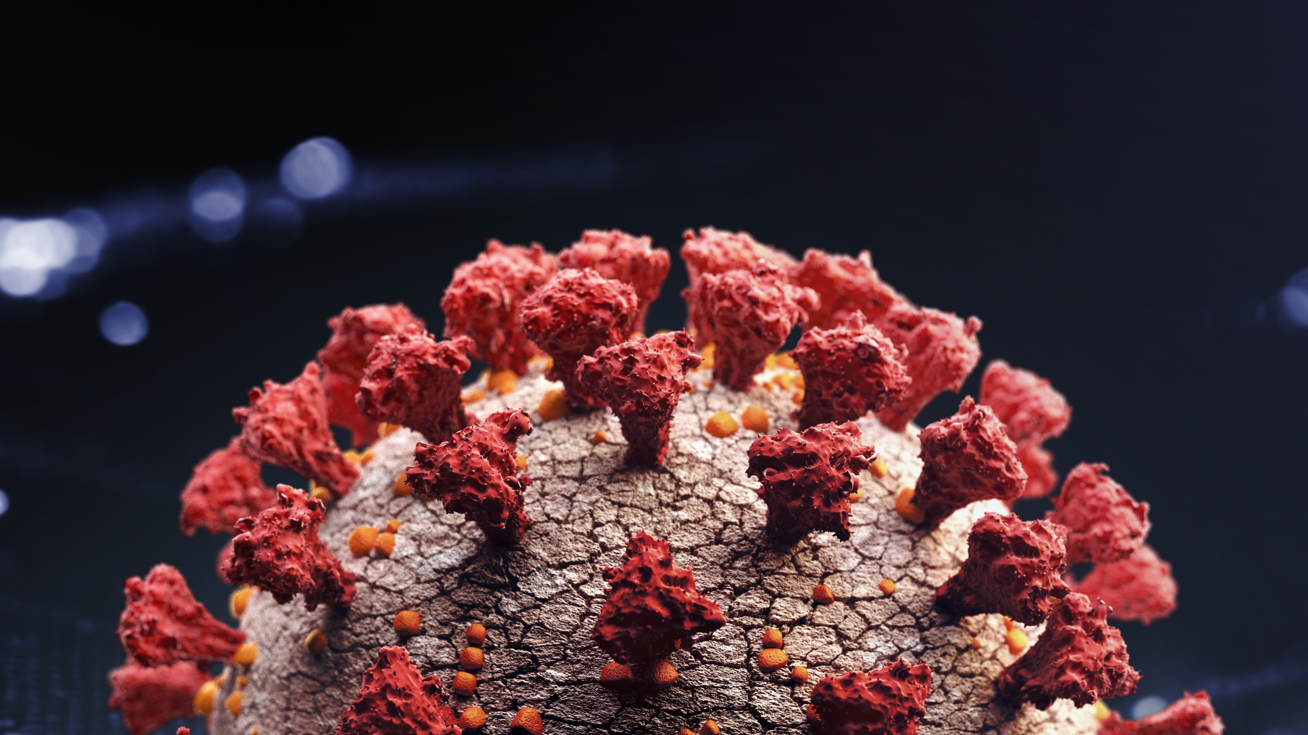 Corona virus close up