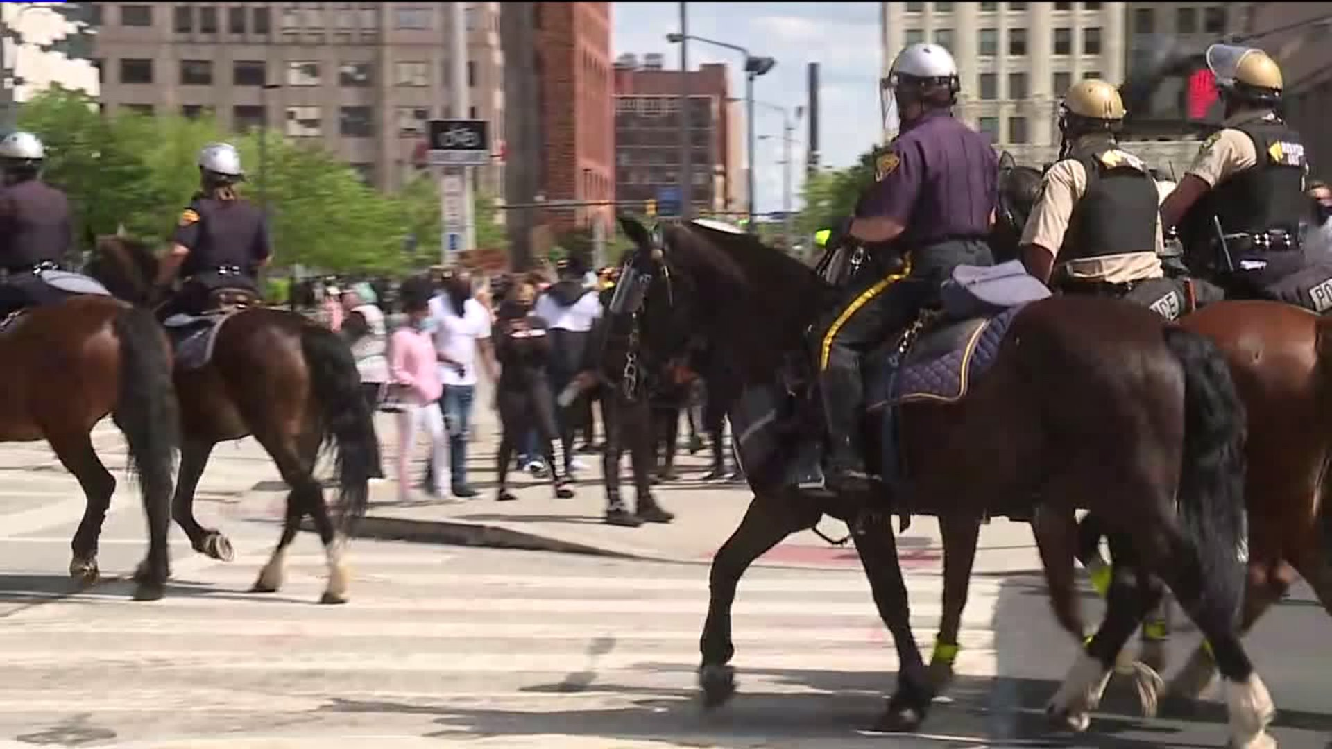 Ohio Animal Hospital Offers Free Care For Police Horses Injured During Weekend Protests