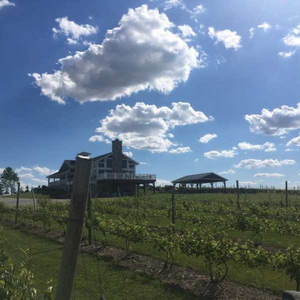 Quarry Hill Winery