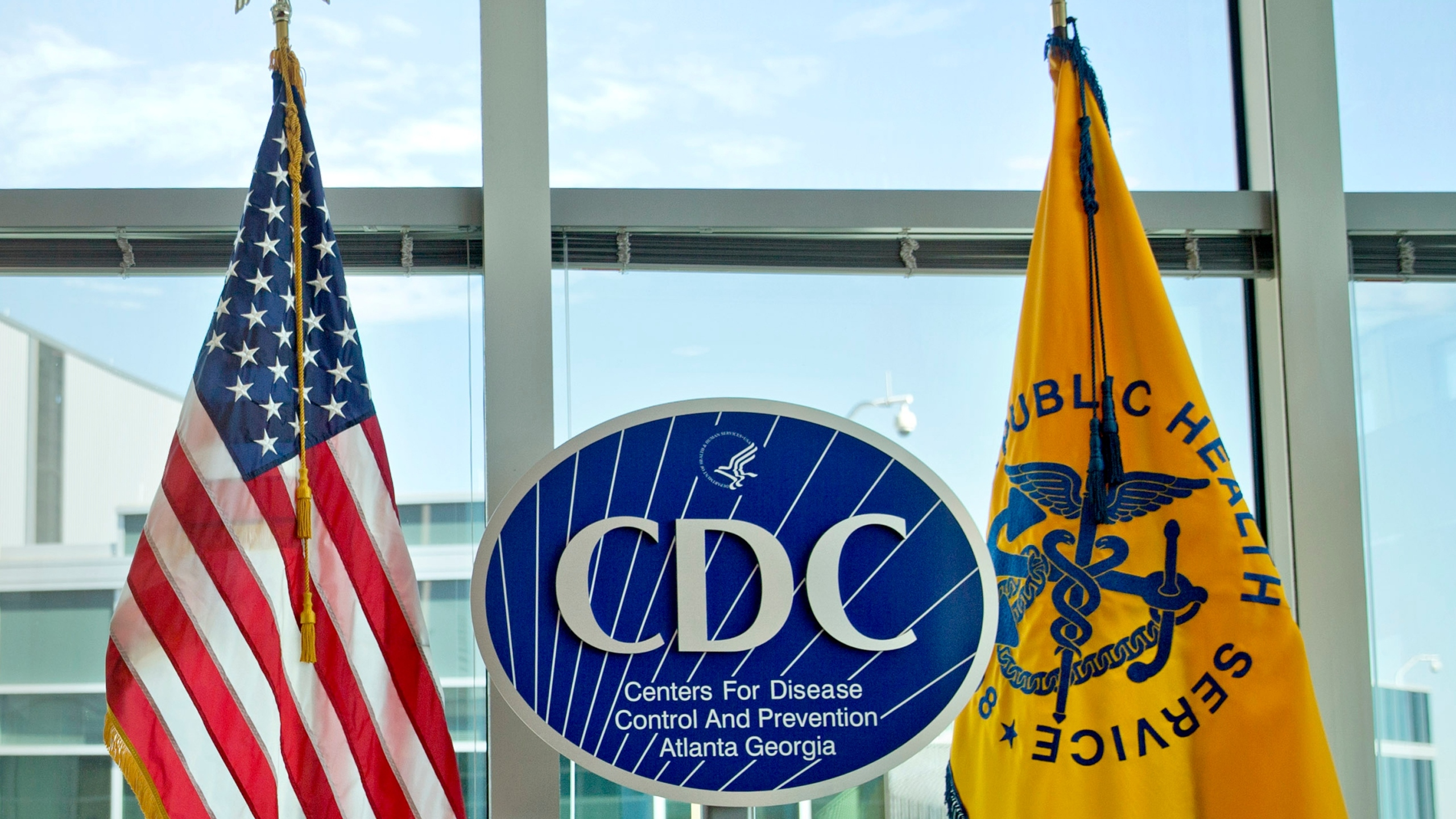 This Nov. 19, 2013 file photo shows a Centers for Disease Control and Prevention logo at the agency's federal headquarters in Atlanta.