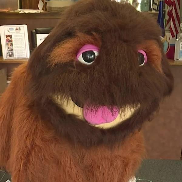 Woollybear Festival