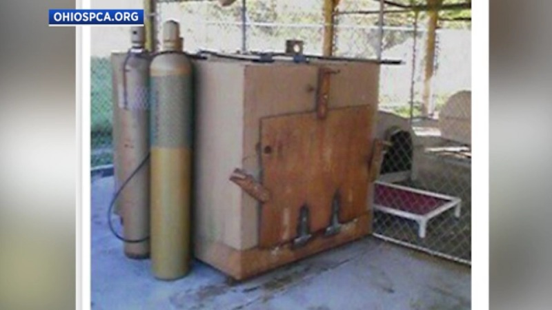 homemade gas chamber