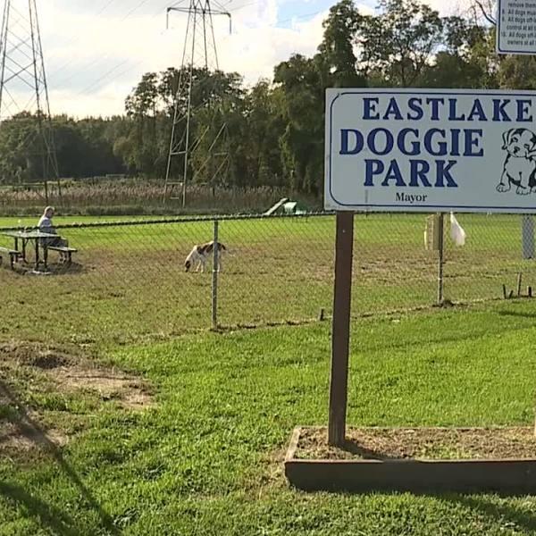 Eastlake dog park