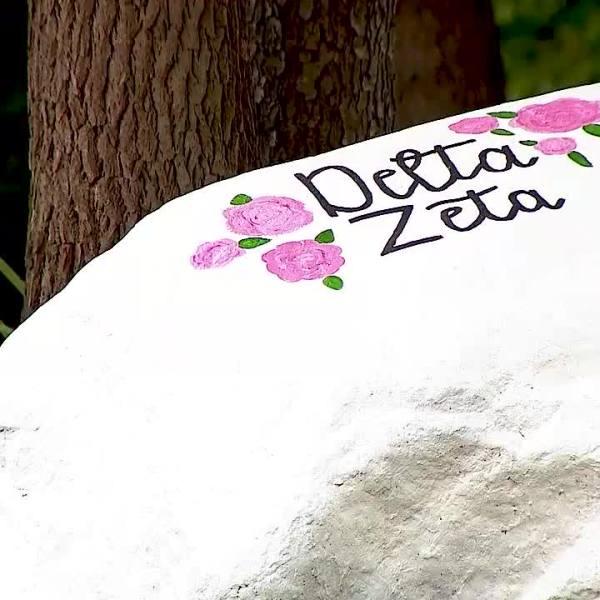 Kent State Delta Zeta